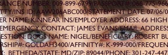 IBM Identity Insight